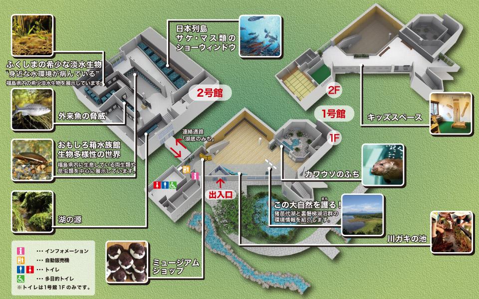 アクアマリンいなわしろカワセミ水族館フロアマップ
