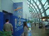 企画展『Alii!パラオ 黒潮源流の海』( 会期:2004/7/15~2005/5/23 )