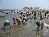 ランラン浜での潮干狩り