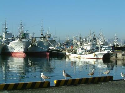 小名浜漁港風景