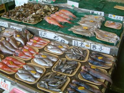 販売される鮮魚。 水産資源の研究も、水族館の使命の一つである。