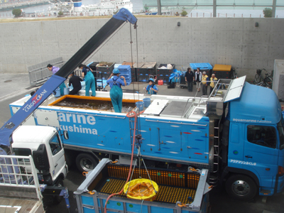 25t活魚トラック「碧竜」