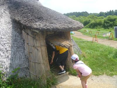 三内丸山遺跡の竪穴住居再現