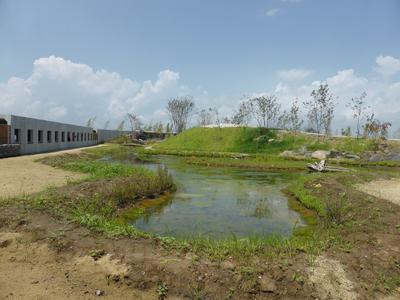 縄文の里の湿地帯