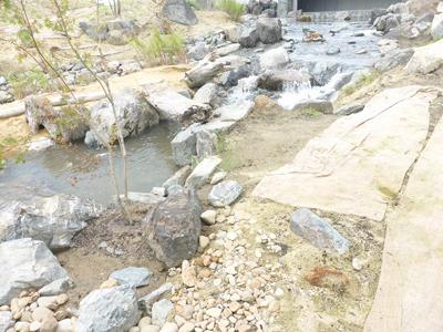 縄文の里の渓流