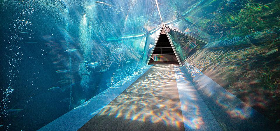 潮目の海・三角トンネル