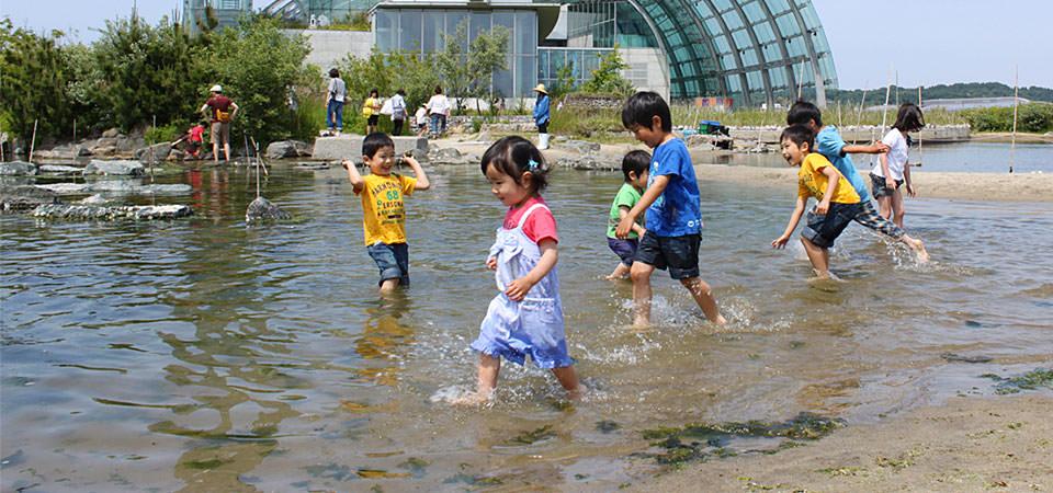 蛇の目ビーチで遊ぶ子供たち