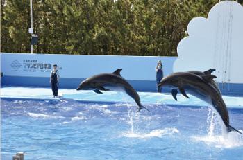 新潟市水族館マリンピア日本海内写真