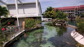 パラオ国際サンゴ礁センター内写真