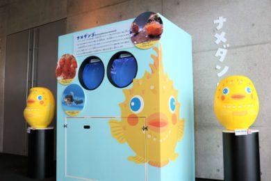 卵から育てる水族館