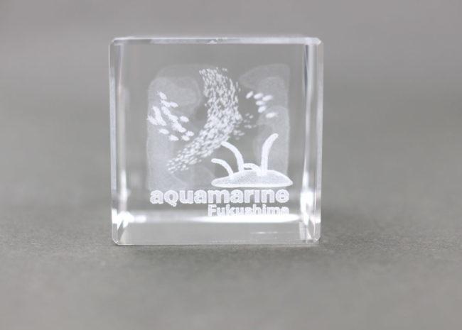 3Dアートチンアナゴ水槽2420円-
