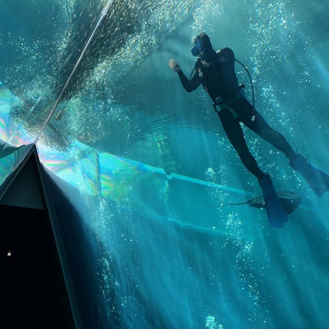 大水槽潜水作業
