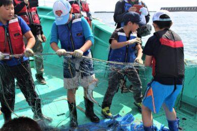 漁師になって魚をとってみようイメージ